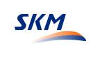 SKM Warszawa